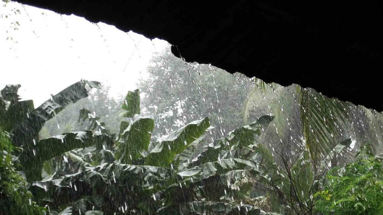 Vaguada continuara provocando aguaceros, tormentas eléctricas y vientos; se  mantienen las alertas meteorológicas - GG Noticias Destacados Destacados